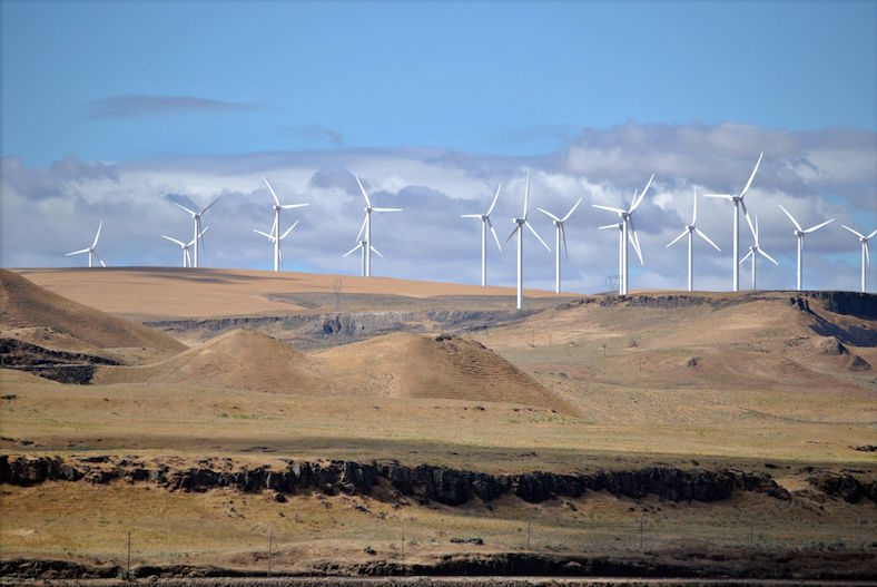 Shepherds_Flat_Wind_Farm_788x527 copy