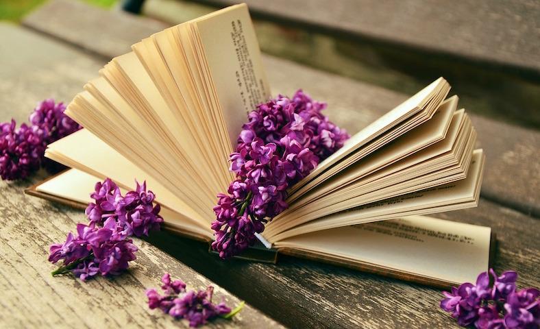 book-759873_788x480copy