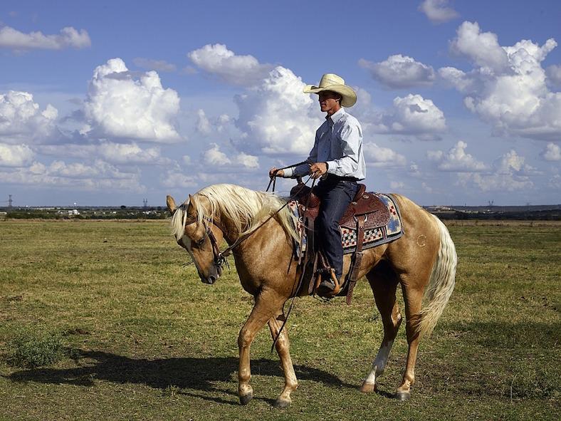 cowboy-746992_788x591copy