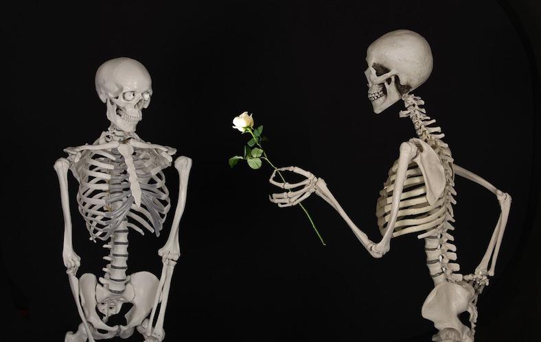 skeletal-601213_788x499copy