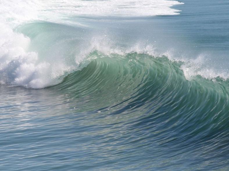 wave-2189_788x591 copy